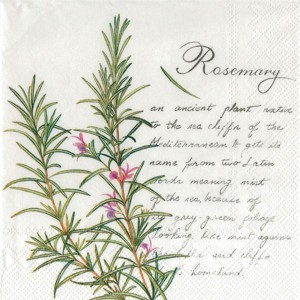 Serwetki do decoupage 33x33cm ROSEMARY WHITE